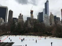 Central Park Skating Rink, New York