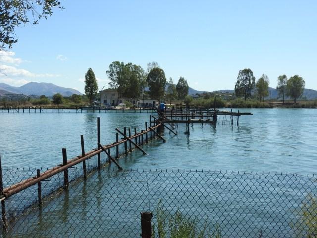 Lake Butrint, Albania