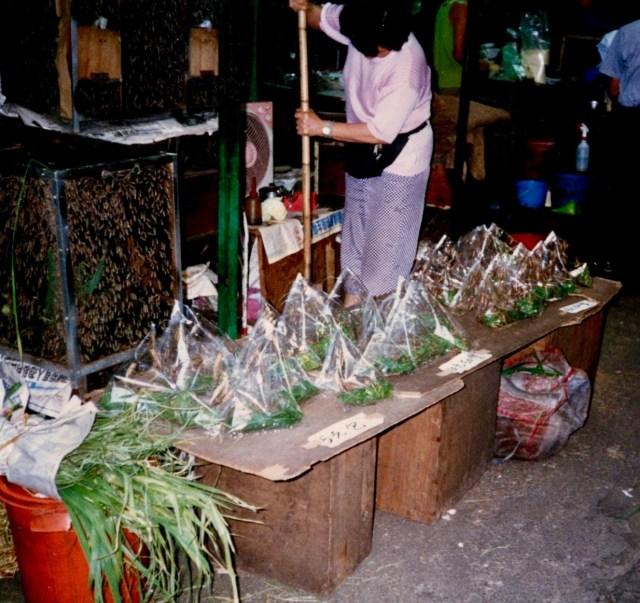 Bird Food Hong Kong Style