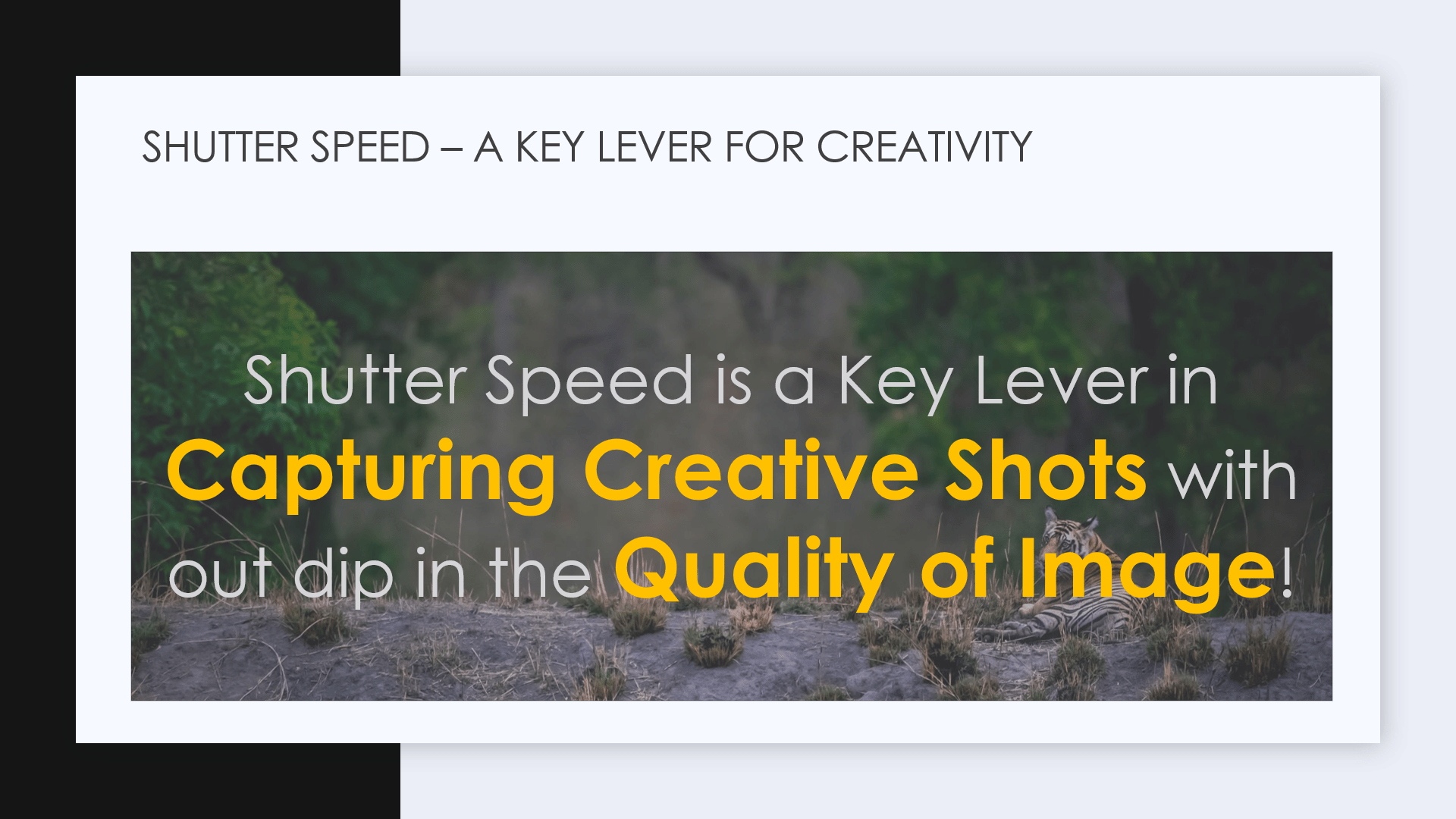SHUTTER SPEED- A KEY LEVER FOR CREATIVITY