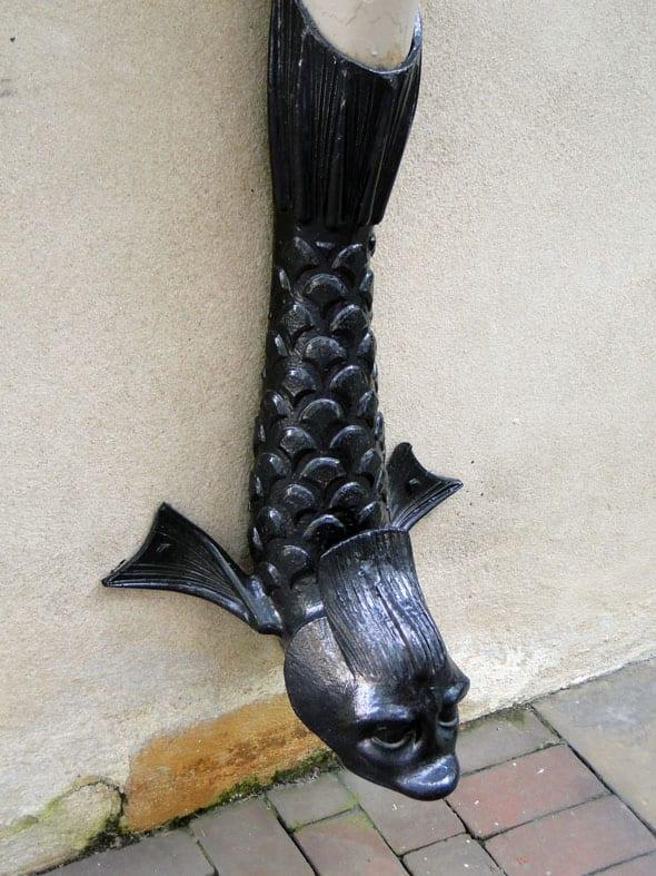fish drainpipe