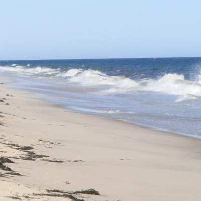 Just a walk on the beach