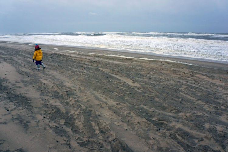 yellow coat windy beach