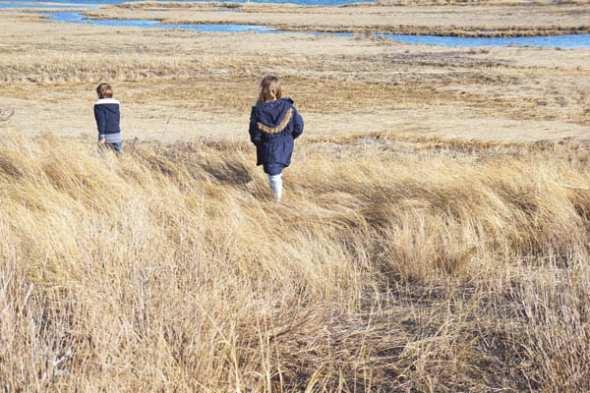 creeks water meadows three mile harbor