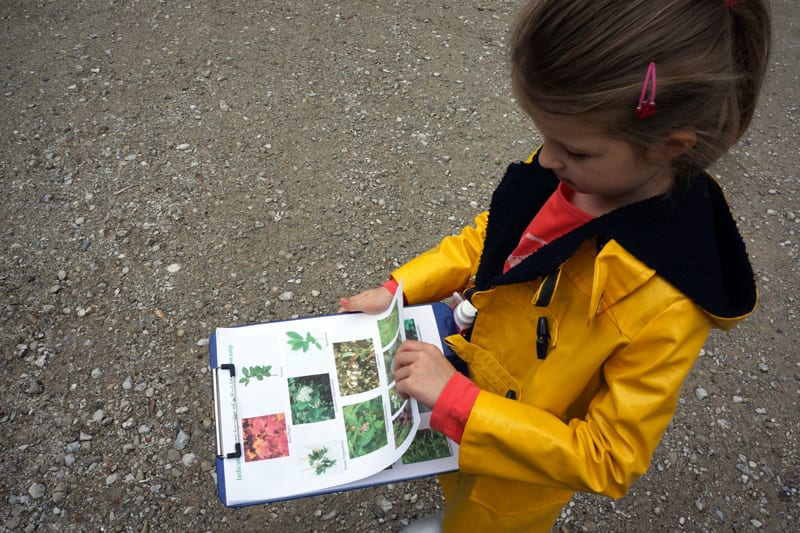 young nature detective with plant printouts