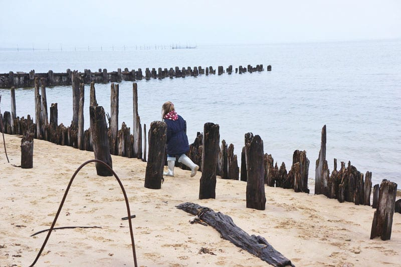 Running among wood posts Alberts Landing Amagansett