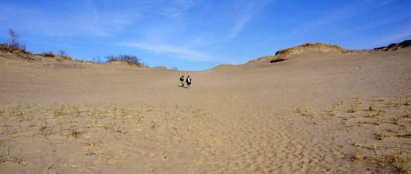 Panoramic View The Walking Dunes