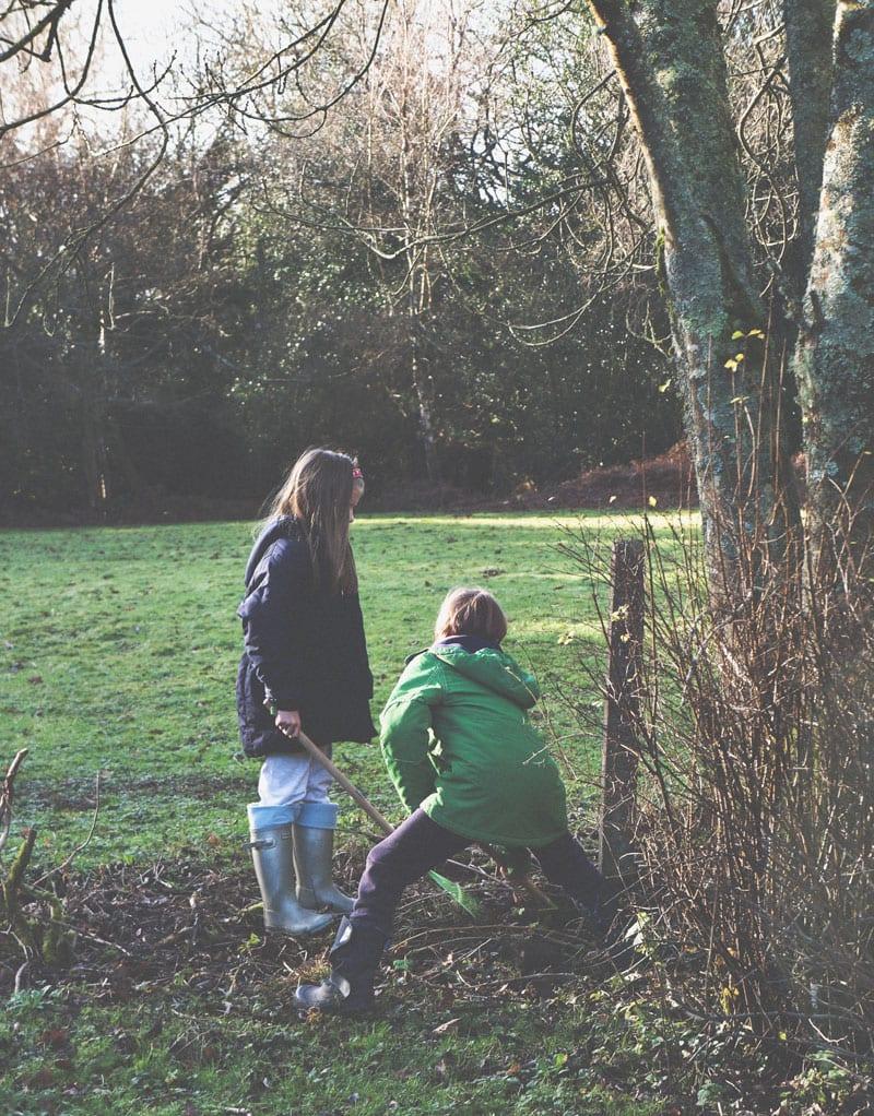 digging hole birdfeeder platform