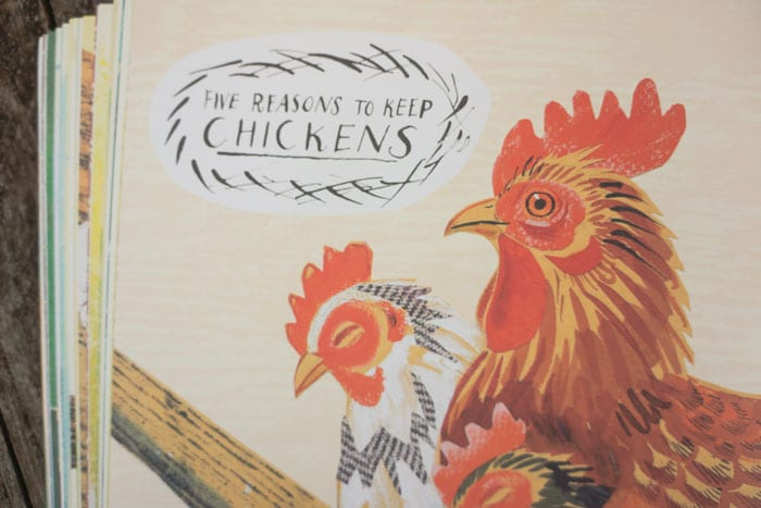 Five Reasons to Keep Chickens