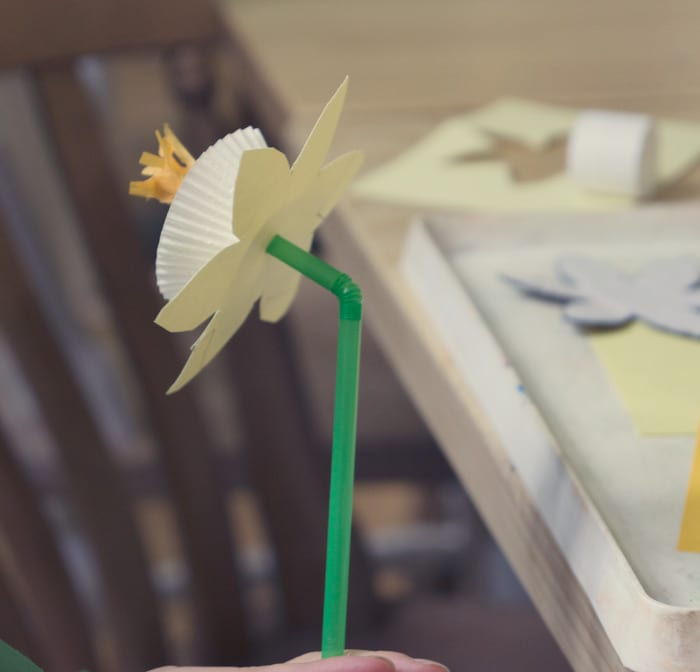 Paper Daffodils Wild About Here