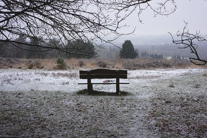 Bench with view in Ashdown Forest