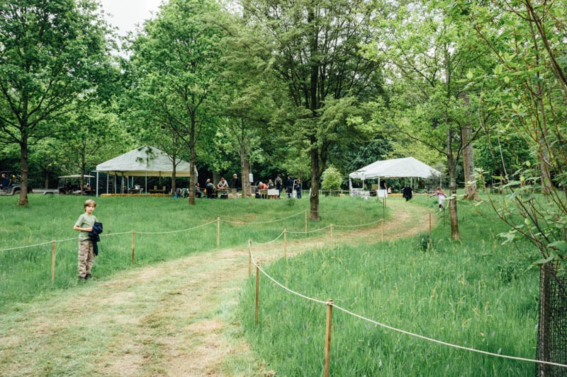 Wakehurst Wild Wood stands