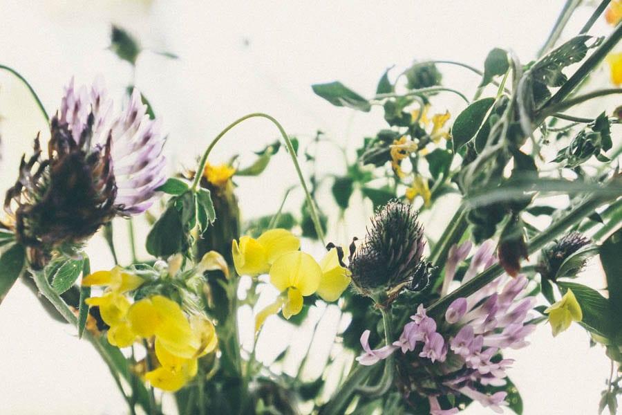 Mix of wild flowers