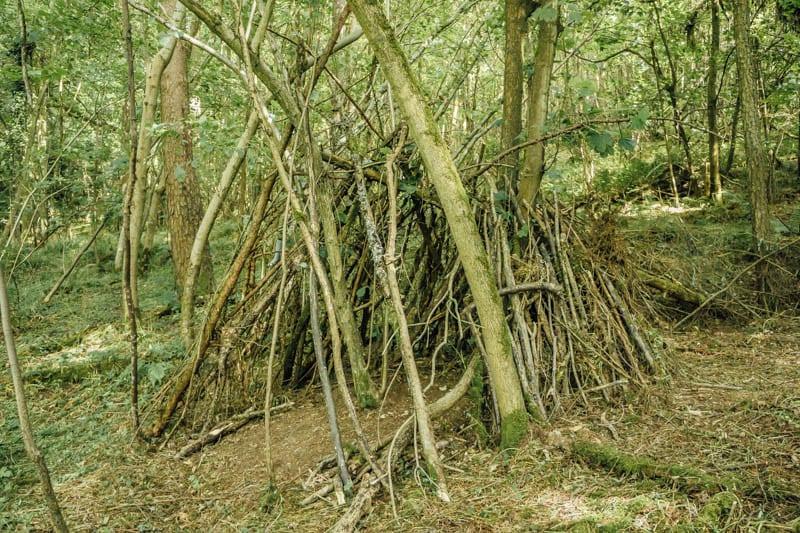 den constuction in the woods
