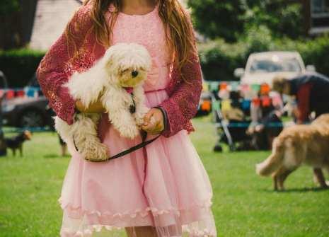 Puppy winner at dog show
