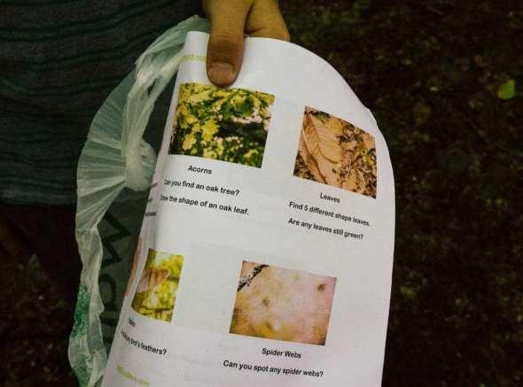 Woodlands scavenger sheet in hand