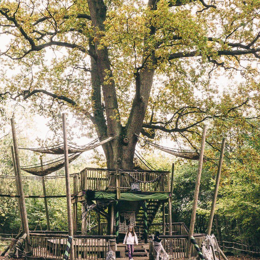 Groombridge Place Crusoe play area