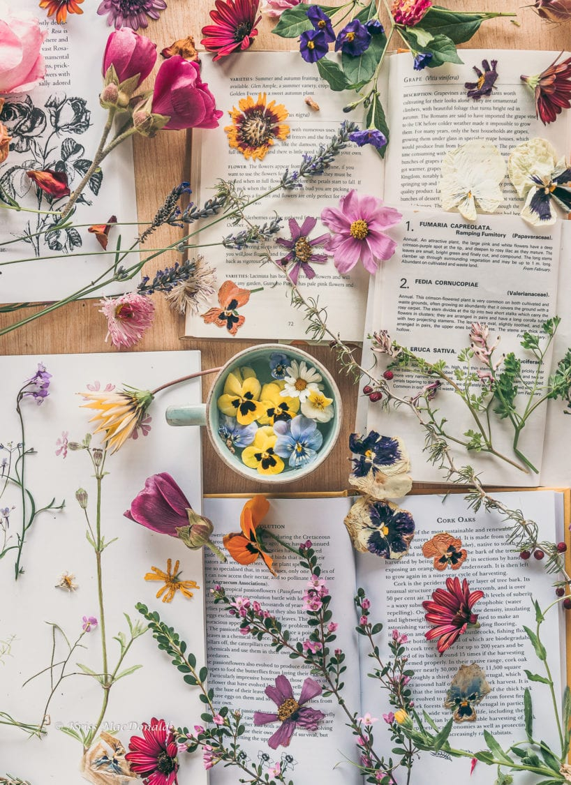 flower tea books
