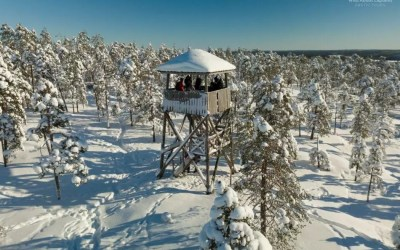 If you want to experience the arctic nature, come to Rovaniemi!