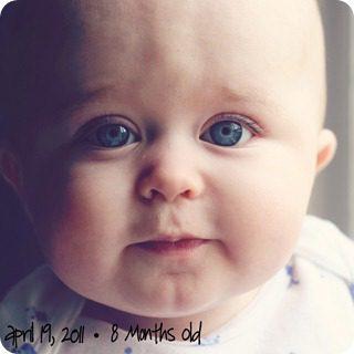 8 months2