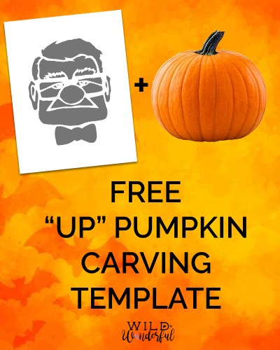 "Disney's ""UP"" Pumpkin 