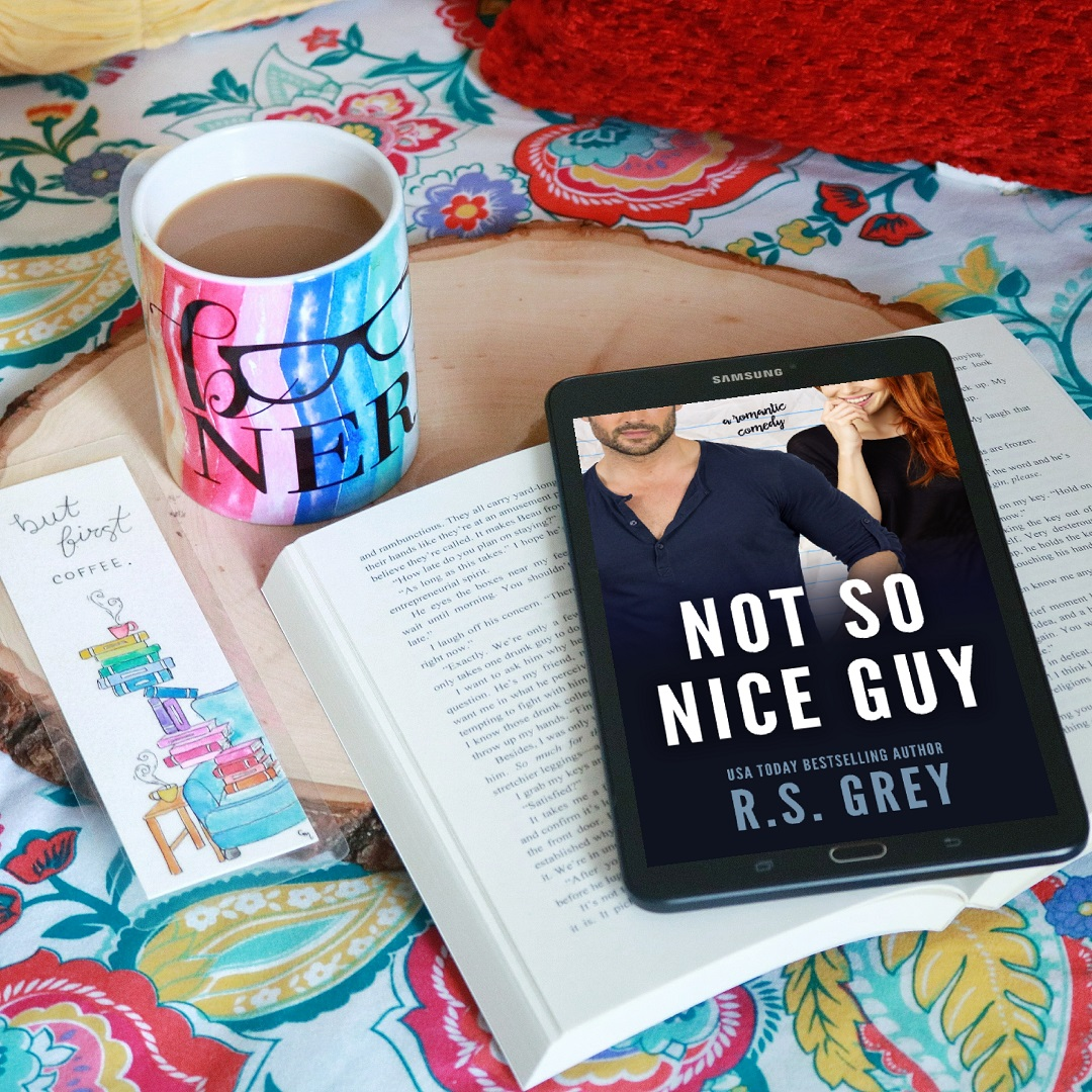 RELEASE DAY BLITZ:  Not So Nice Guy by R.S. Grey