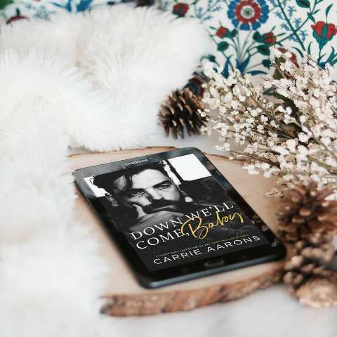 BLOG TOUR | BOOK REVIEW:  Down We'll Come, Baby by Carrie Aarons