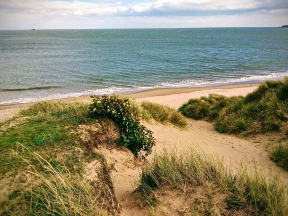 nearby lunan bay