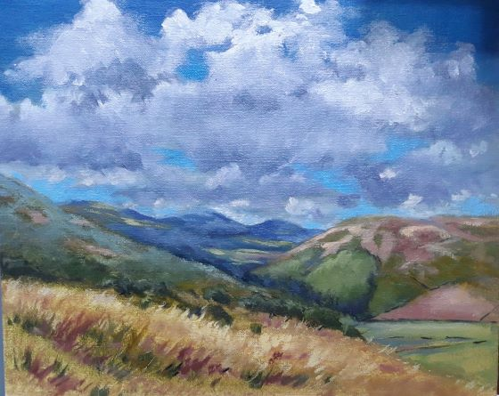 View of Galloway Hills by Liz Gilbey