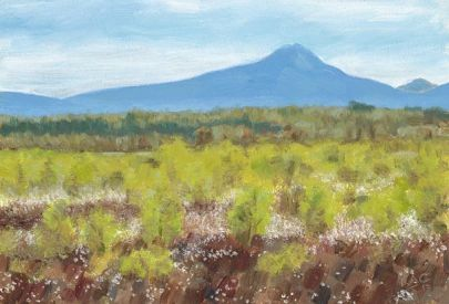 KAC Ben Lomond from Flanders Moss with Birches-1