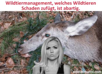 Wildtiermanagement