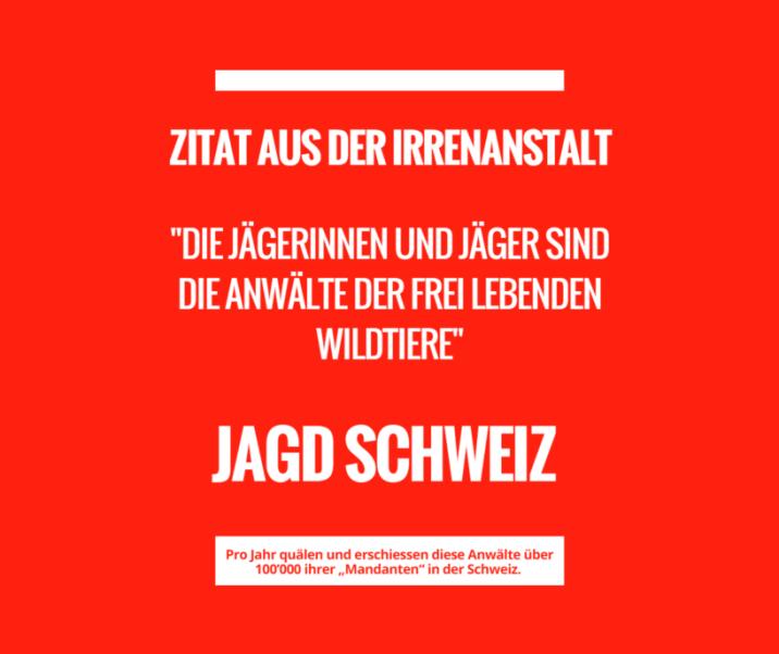 https://jagdschweiz.ch/jagdschweiz/