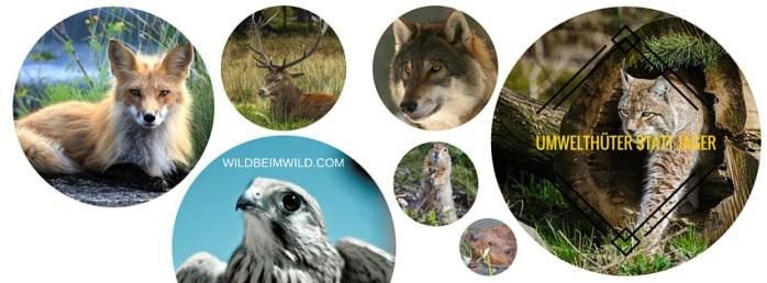 Umwelthüter statt Jäger