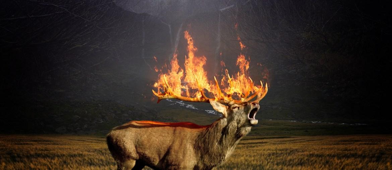 Jäger und Naturschutz