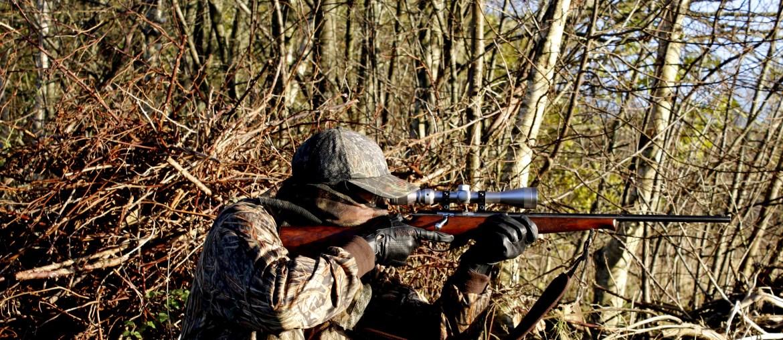 Jäger werden gelobhudelt
