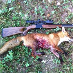 Besuch beim Jäger