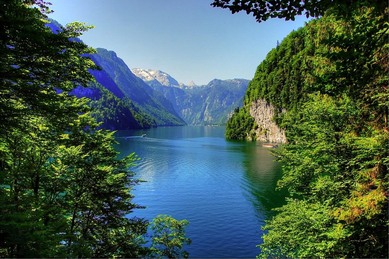 Bayerische Wald