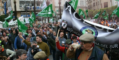 Spanien: Hobby-Jäger sehen sich in Frage gestellt