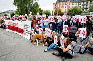 Demonstration für Tierrechte