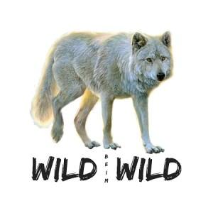 Autoaufkleber Wolf