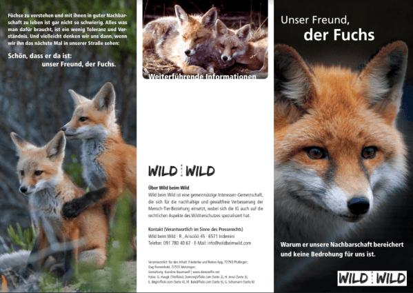 Unser Freund der Fuchs (Version Schweiz) Back