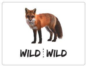 Wild beim Wild Aufkleber Fuchs