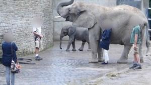 Zoo Wuppertal