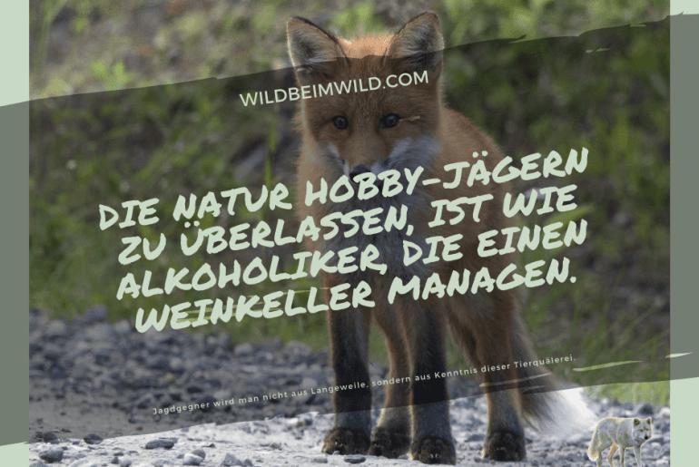 Die Natur Hobby-Jägern zu überlassen, ist wie Alkoholiker, die einen Weinkeller managen.