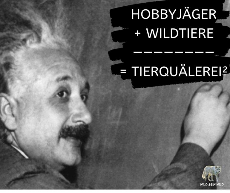 David Clavadetscher: Der Hobby-Jäger