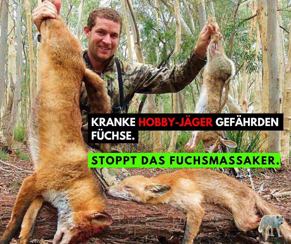 Schweiz: Schluss mit der Fuchsjagd