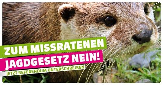 Brigit Wyss Solothurn