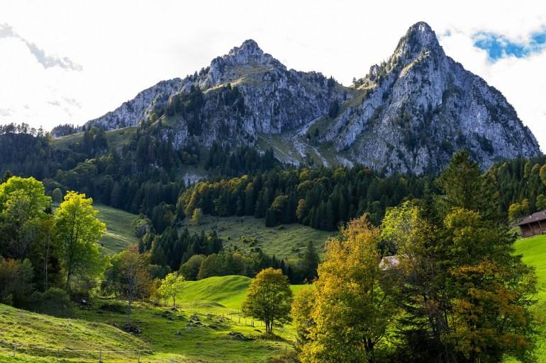 Amt für Jagd und Fischerei wird in Schwyz aufgelöst
