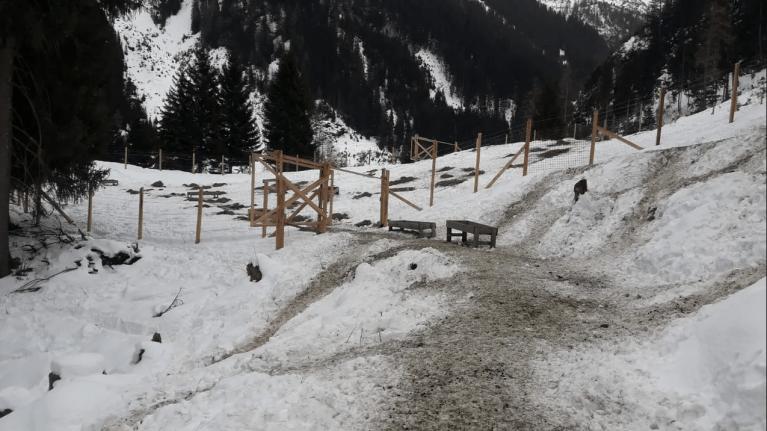 Tirol: Geballte, doppelte Gewalt