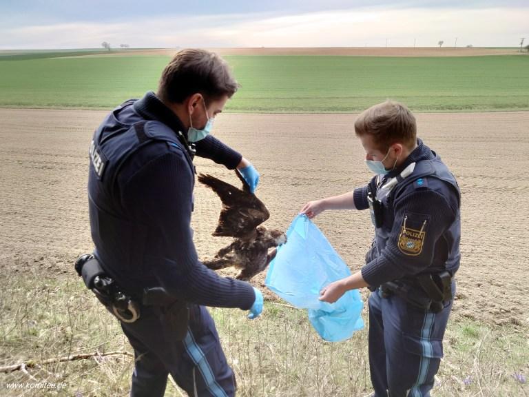 Artenschutzkriminalität in Bayern